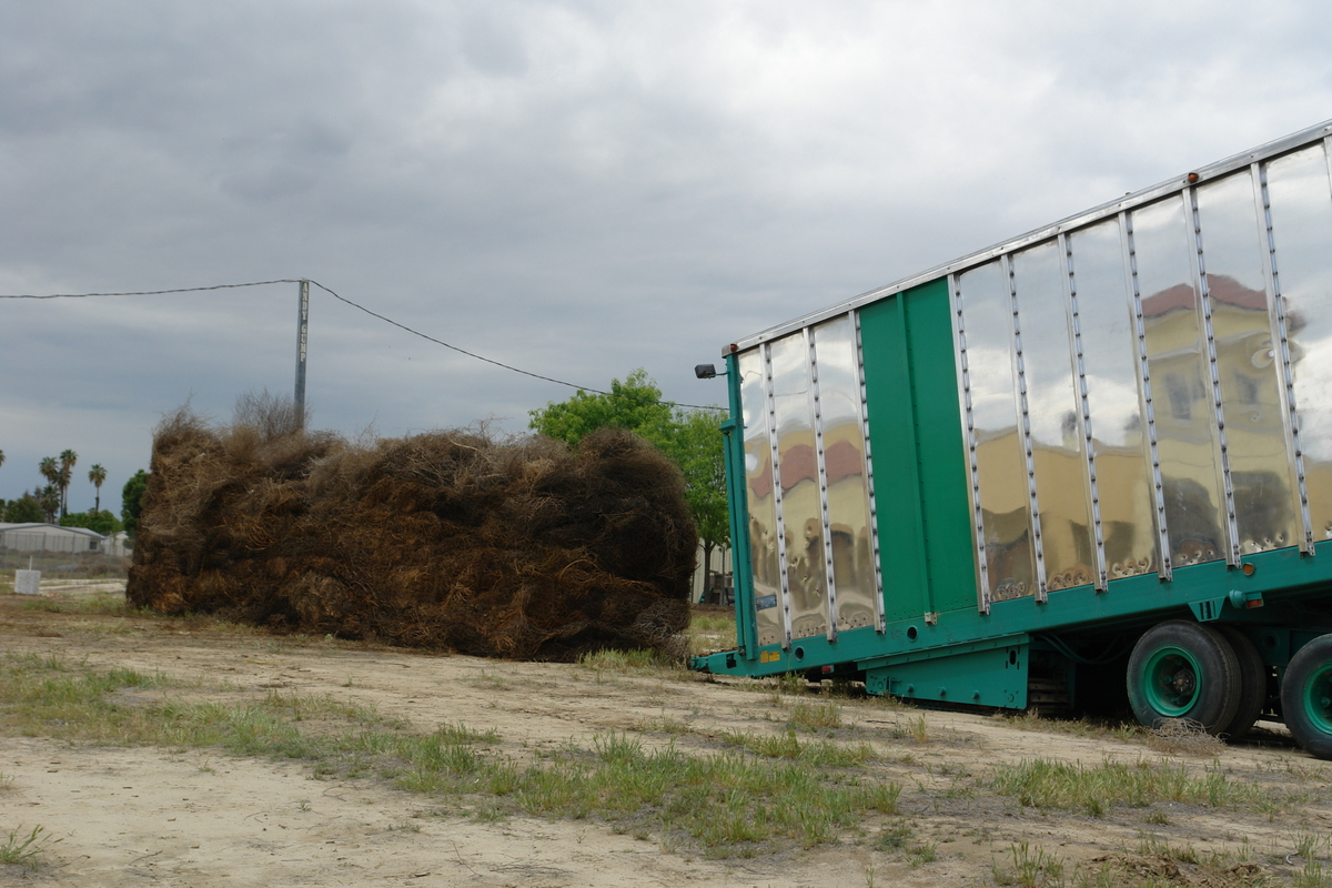 Loading the module in to the mover for transport